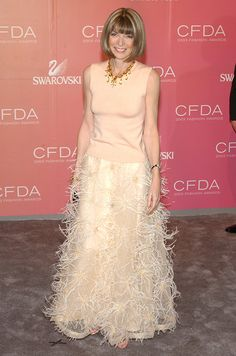 Anna at the CFDA Fashion Awards, 2003.