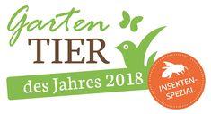 Good Vibrations: Die Dunkle Erdhummel ist das Gartentier des Jahres 2018. Zum Tag des Gartens am 11. Juni gibt die Heinz Sielmann Stiftung den Gewinner der Abstimmung bekannt.