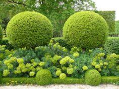 Topiaires, euphorbes des garrigues, bordure et boules de buis, jardin formel devant l'Orangerie du Parc de Sceaux, Hauts-de-Seine