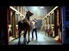 "2015 Budweiser Super Bowl Commercial ""Lost Dog"""