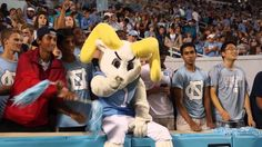 A NIGHT IN THE TAR PIT Blue Blood TV - UNC vs NC A&T