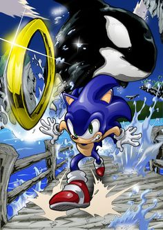 Sonic must have said something to the whale about it being a fish, so the whale gets ****ed and goes after sonic