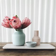 "135 Likes, 2 Comments - Mint Interior Design (@mintinteriordesign) on Instagram: ""Fresh Proteas from the garden, all homewares in store! Shop our intafeed straight from our homepage…"""
