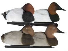 Avian-X Topflight Canvasback, 6 Pack