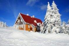 Serlich Eagle, Cabin, Vacation, Mountains, Nice, House Styles, Places, Home Decor, Vacations