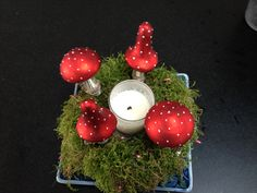 Simple Moss Wreath with pink fairy lights