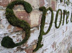 spore. #moss #mossgraffiti #guerilla #gardening #guerillagardening