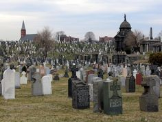 Calvary Cemetery, Blissville Queens, NY