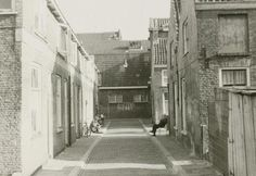Delft, Anna Boogerd.