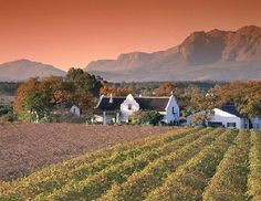 Must go to Stellenbosch in the Cape Winelands, for some really pretty countryside, great food, and WINE!