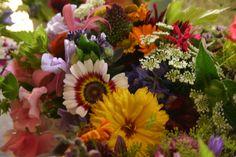 jewel coloured posies for a bright wedding - flowers by www.commonfarmflowers.com