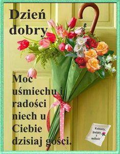 Magnolia, Good Morning, Humor, Disney, Polish, Pictures, Buen Dia, Bonjour, Magnolias