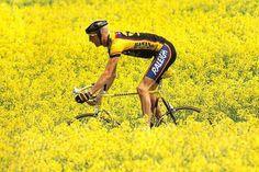 1989 Raleigh Banana Team Bike - Dave Rayner | Retrobike Classic Road Bike, Pro Cycling, Midlife Crisis, Banana, Cyclists, Running, Retro, Yorkshire, Sports