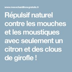 Répulsif naturel contre les mouches et les moustiques avec seulement un citron et des clous de girofle !
