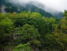 Huangshan, China (YELLOW MOUNTAIN/LANDSCAPE) III #china #landscape