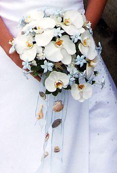 http://beach-theme-wedding-ideas.com/wp-content/uploads/2010/11/white_orchid_bouquet_shells.jpg