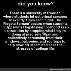 There's a university in Sweden where students let out primal screams at exactly 10pm each night. The 'Flogsta Scream' occurs when students in Uppsala's Flogsta neighborhood keep up tradition by stopping what they're doing at precisely 10pm and...