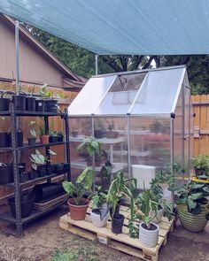 Utilizing the greenhouse so save the rain water in rain barrel is a grate idea