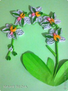 Картина панно рисунок 8 марта Квиллинг Мои орхидеи  вдохновляюсь мастерицами сайта  Бумага фото 3