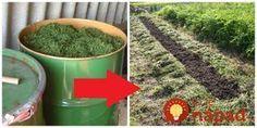 Z odpadu hotový poklad - trávu, ktorú pokosíte na svojej záhrade rozhodne nevyhadzujte - môže vám byť ohromne nápomocná v záhrade. Kvas z trávy a byliniek Z pokosenej trávy a rastlín, ktoré sa v nej nachádzajú –