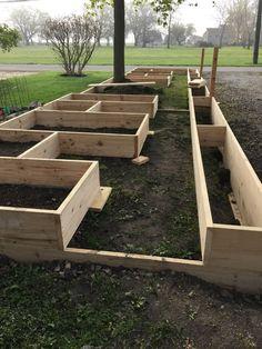 ✔56 vegetable garden design ideas for beginner 3