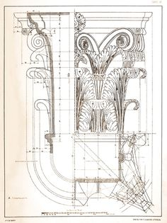 laureys-acanthus-014.jpg (748×1000)