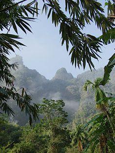 Khao Sok National Park in Thailand. #Park #Nature #Thailand