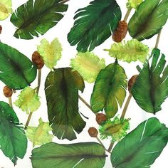 Potpourri (green)