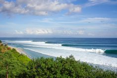 Perfect lines. Lineup of Desert Point - Lombok island.