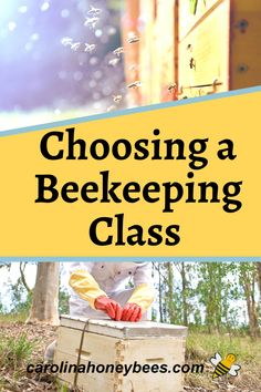 A good beginners beekeeping class is a great way to get started with your own beehive. In fact, I suggest you take several as each one will have something to offer. #carolinahoneybees #beekeepingcourse