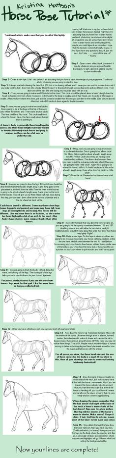 A horse pose tutorial! Yay! The other day ~Trithani suggested that I should make one, and yesterday for no reason at all my interwebs went out (it just got fixed this evening) so I was drawing a re...