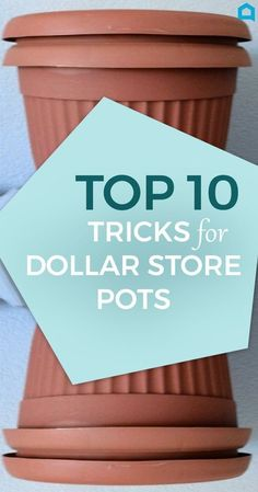 Here Are 10 Gorgeous Designer Tricks for Your Dollar Store Pots- Transform your dollar store pots into some spectacular! #DIY #DollarStoreCrafts #Fabulous #Planting #Repurpouse