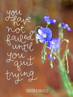 You have not failed until you quit trying. Gordon B Hinckley quote