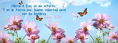 """Yo creo en esta palabra - Lucas 2:14 """"¡Gloria a Dios en las alturas, Y en la tierra paz, buena voluntad para con los hombres!"""""""