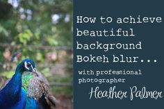 How to achieve that beautiful background bokeh blur, while still keeping your subjects sharp and in focus.