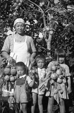 Ko and children enjoying a bountiful crop of persimmons, Chacara Arara, Londrina, Paraná, ca. 1940s by Haruo Ohara || Japanese immigrants in Brazil