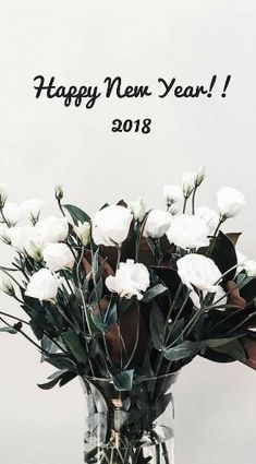 New year images beautiful 2018 for him her lover boyfriend and girlfriend. I just have one wish for you this New Year. May you have abundance of joy, best of health, unlimited happiness and whole lot of good luck all through the year. Happy New Year!