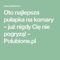 Oto najlepsza pułapka na komary – już nigdy Cię nie pogryzą! – Polubione.pl Lol, Health, Tips, Household, Health Care, Fun, Salud, Counseling