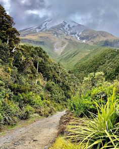 It is an active but quiescent stratovolcano in the Taranaki region and has one of the most symmetrical volcanic cones in the world. - I made there a wonderful round hike of about 4 hours. Long White Cloud, Top Destinations, 4 Hours, Natural Wonders, All Over The World, Mount Rainier, New Zealand, To Go, Vacation