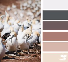 { creature tones } image via: @julie_audet Voor meer kleuren en kleurentrends kijk ook eens op http://www.wonenonline.nl/interieur-inrichten/kleuren-trends/