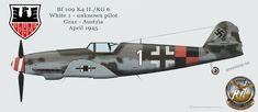 Luftwaffe Profiles part III by Adlerhorst-Hangar design group: BF 109 Profiles Miscellanous units