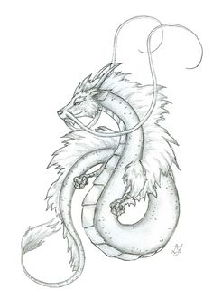 Japanese Dragon Sketches | small japanese dragon by lizzy23 traditional art drawings fantasy 2006 ...