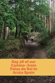 330 Ideas De Camino De Santiago En 2021 Camino De Santiago Santiago Camino