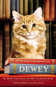La storia commovente del gatto Dewey