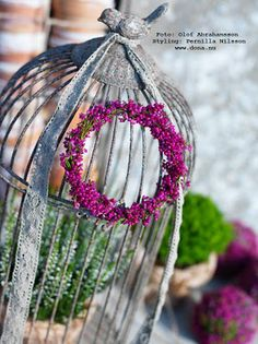 Heather wreath on a bird cage. The Caged Bird Sings, Shabby Chic Garden, Bird Cages, French Country Decorating, Beautiful Gardens, Beautiful Things, Bird Houses, Plant Hanger, Birds