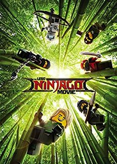 £10.The LEGO Ninjago Movie [DVD + Digital Download] [2017]