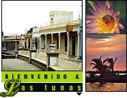 All about Las Tunas Cuba – Links to important websites focused and dedicated on Las Tunas, Things to do in Las Tunas, Best Hotels in Las Tunas and Private restaurants in Las Tunas Cuba