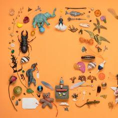 frédéric clément, frederic clement, livres, miniature, grains de beauté, lubie, fleurs, vanités, chat, chapeau, paradisier, cabinet curiosités, ange, naples, napoli, chapelier, plumes, chapellerie, paradis, cirque, circus, botanique, magasin zinzin, jardin, tuileries, fleur, vanité, cabinet de curiosités, cachan, bièvre, val de marne, paris, secret | | facebook | | lien permanent | |