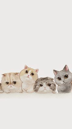 Ideas Cats Wallpaper Iphone Pictures For 2019 - Cats - Cat Wallpaper Iphone Wallpaper Cat, Tier Wallpaper, Cute Cat Wallpaper, Animal Wallpaper, Wallpaper Ideas, Seagrass Wallpaper, Paintable Wallpaper, Colorful Wallpaper, Fabric Wallpaper