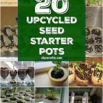 20 Upcycled Seed Starter Pots You Can Easily Make At Home Diy Planters, Upcycle, Seeds, Backyard, Diy Crafts, Canning, Fruit, Pots, Gardening